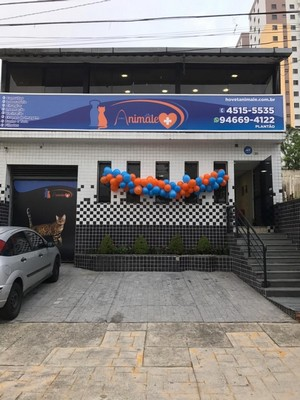 Clínica Veterinária 24 Horas Ribeirão Pires - Clínica Veterinária para Gatos