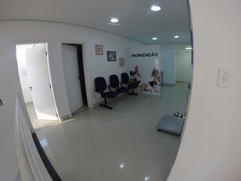 Hospital Clínico Veterinário Santo André - Hospital para Animais