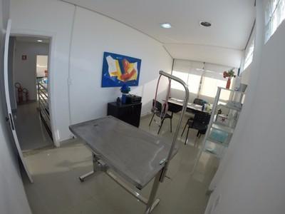 Hospital Veterinário Mooca - Hospital Veterinário para Emergência