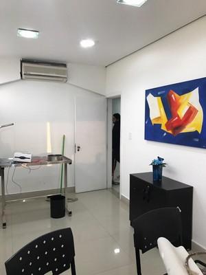 Onde Encontrar Cirurgia em Gatos Ribeirão Pires - Cirurgia Cardíaca Veterinária