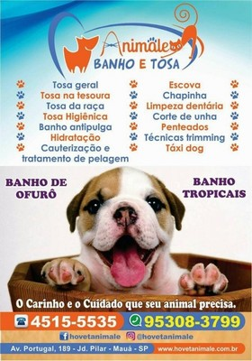 Onde Encontrar Clínica Veterinária e Pet Shop Diadema - Clínica Veterinária e Pet Shop