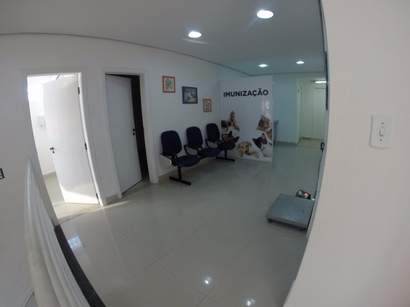 Onde Encontro Cirurgia Catarata Veterinária Mooca - Cirurgia Catarata Veterinária
