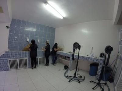 Onde Encontro Clínica Veterinária para Gatos Rio Grande da Serra - Clínica Veterinária e Pet Shop