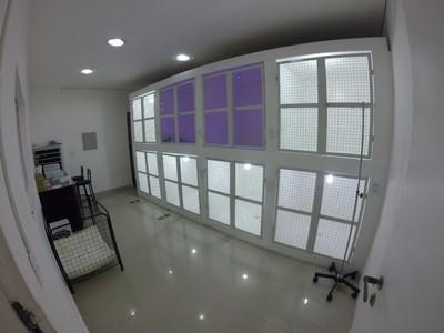 Onde Encontro Hospital de Cachorro Rio Grande da Serra - Hospital Veterinário para Emergência