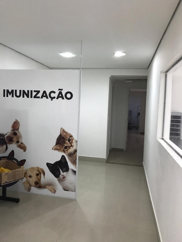 Quanto Custa Internação para Animais Idosos São Bernardo do Campo - Internação de Animais Doentes