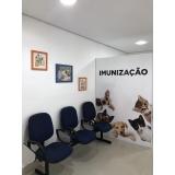 clínica veterinária cirurgia Santo André
