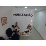 clínica pet shop