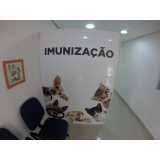clínica veterinária para gatos