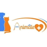 clínica veterinária