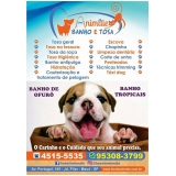 onde encontrar clínica veterinária Diadema