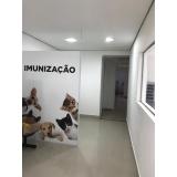 onde encontro cirurgia em gatos São Bernardo do Campo