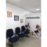 onde encontro clínica veterinária cirurgia São Caetano do Sul