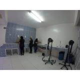 onde encontro clínica veterinária para gatos Santo André